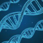 Genetic DNA
